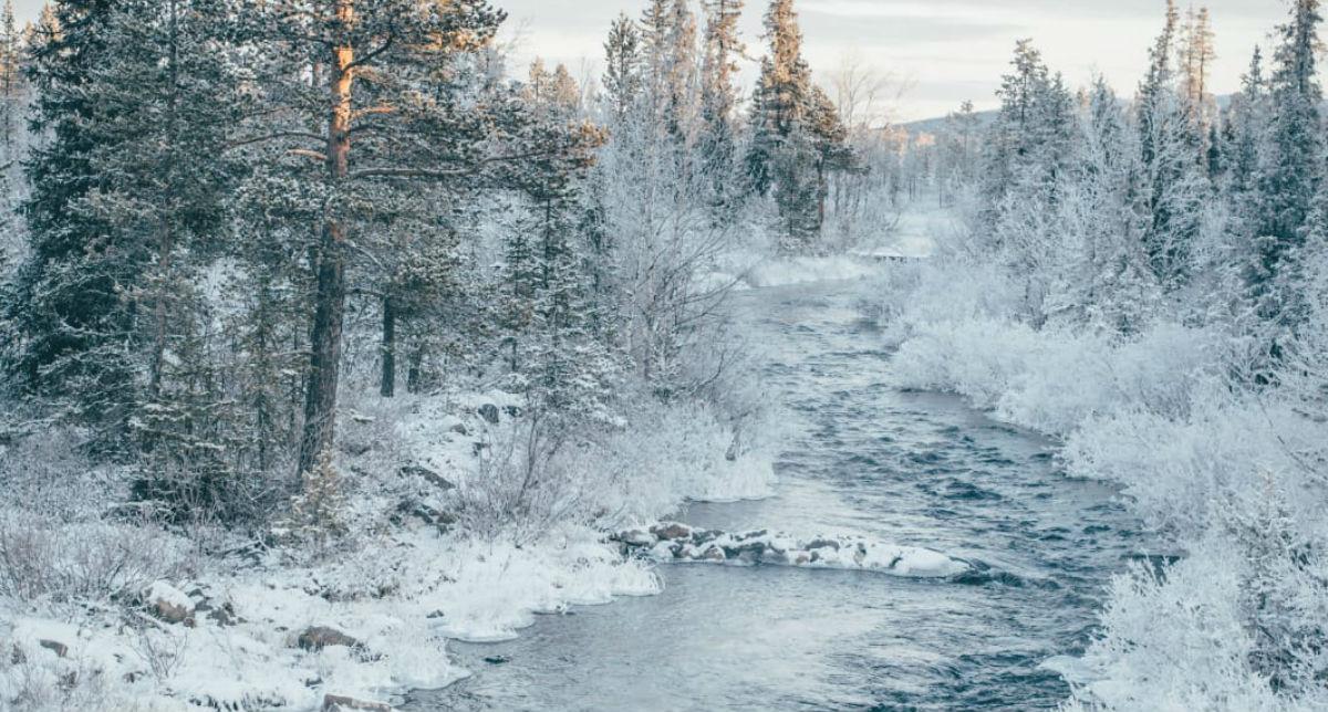 Arctic Circle Day Tours